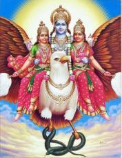 Consorts and Attendants of Vishnu